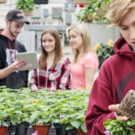 Gestion et technologies d'entreprise agricole